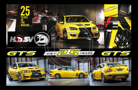 HSV GTS- 25 year anniversary wall art poster
